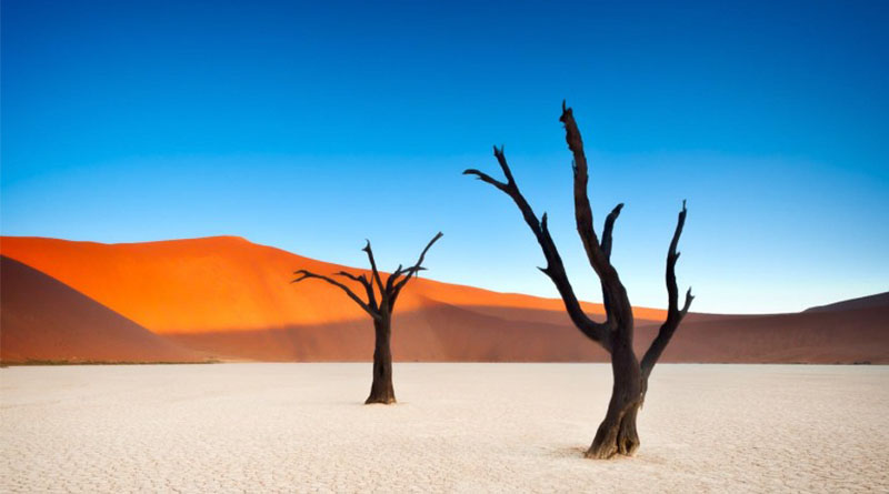 Deadvlei e o Deserto de Namíbia
