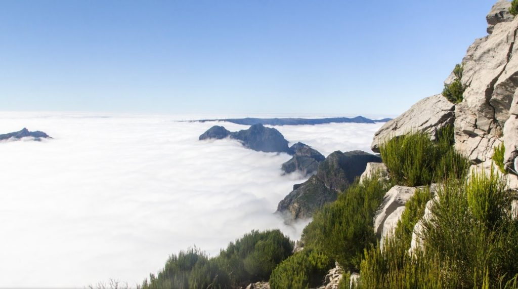 Madeira é a pequena e majestosa ilha de Portugal